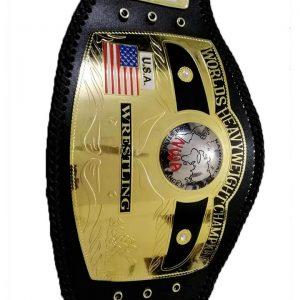 NWA Domed Worlds Heavyweight Championship Belt | NWA Belt
